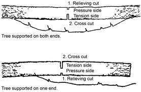 Cross Cutting