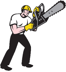 Contact Us - Electric Chainsaw World